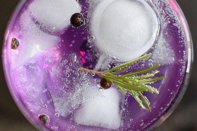 Winter Gin Tonic Rezepte