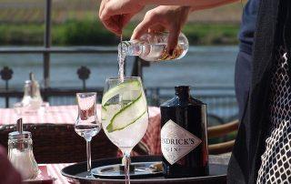 Gin Tonic mit GUrke & Hendricks Gin