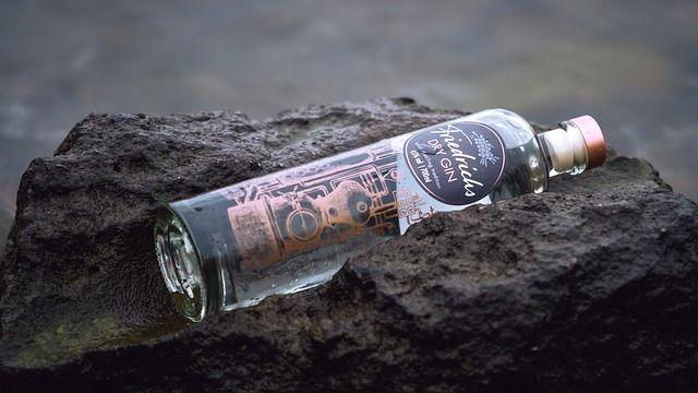 Friedrichs Dry Gin: Tasting & passende Tonic Water