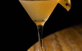 Gimlet Cocktail mit Limette und Zitrone