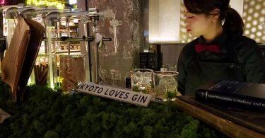 Bar mit Gin Fakten