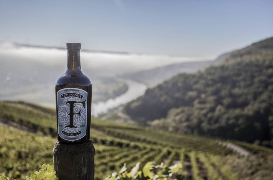 Ferdinands Saar Dry Gin im Test & Tasting