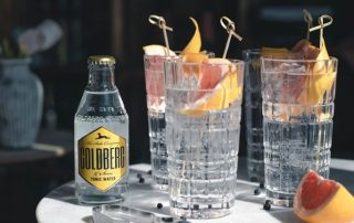 Gin Tonic mit Goldberg Tonic Water