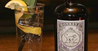 Monkey 47 Gin Tasting & passende Tonic Water