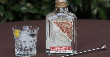 Test & Tasting des Elephant Dry Gin