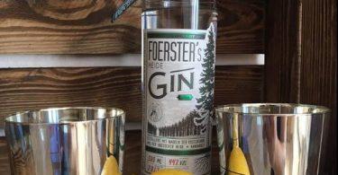 Foersters Heide Dry Gin im Test & Tasting