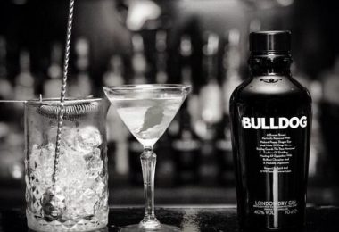 Test & Tasting des Bulldog London Dry Gin
