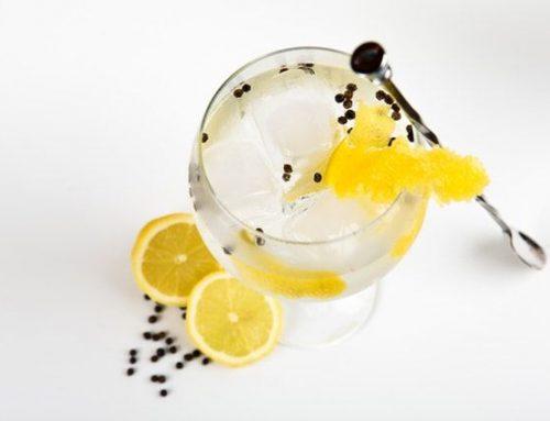 Gin Zubehör & Werkzeug für perfekte Cocktails