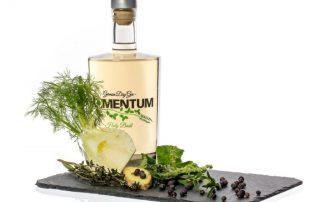 Momentum German Dry Gin im Test & Tasting