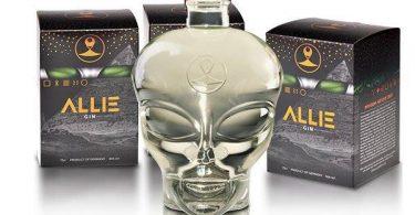 Allie Gin im Test & Tasting
