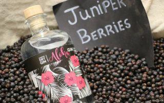 Aloha Gin im Test & Tasting