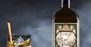 V-Sinne Gin im Test & Tasting