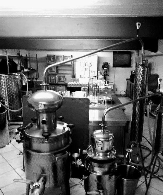 Luchs Dry Gin - Destillerie