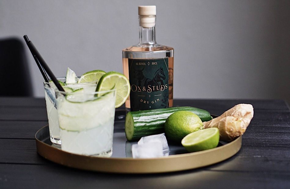 Der Ox & Studs Dry Gin im Test & Tasting