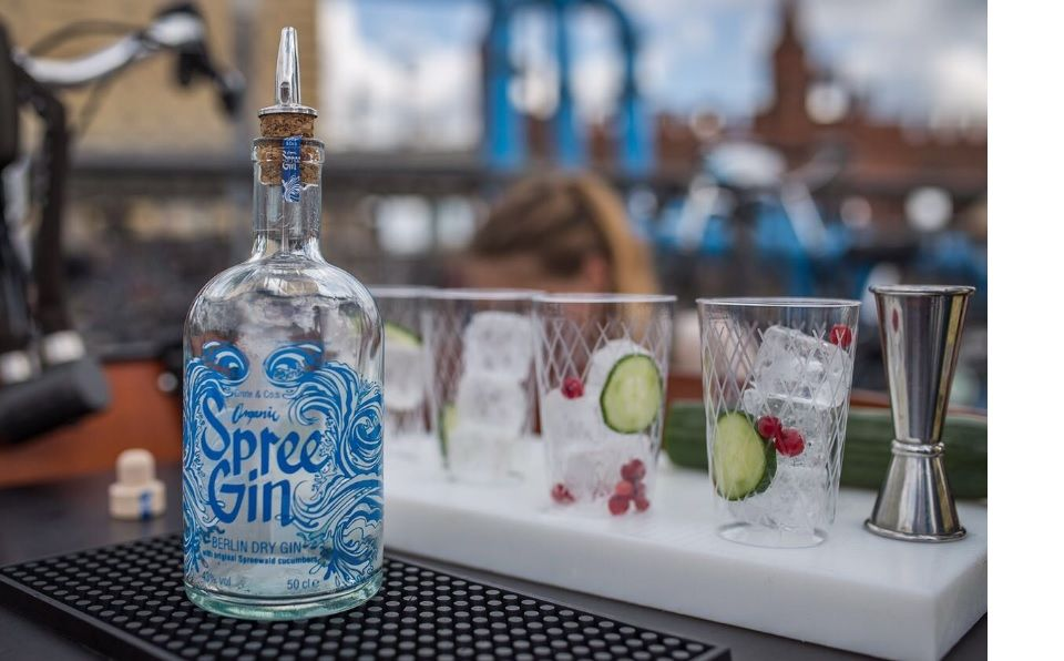 Spree Gin im Test & Tasting
