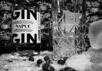 Kyrö Rye Gin im Test & Tasting