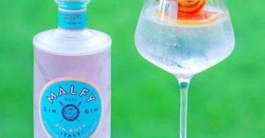 der Malfy Gin Rosa im Test & Tasting