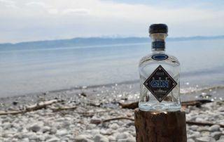 Steinhauser See Gin vom Bodensee im Test & Tasting