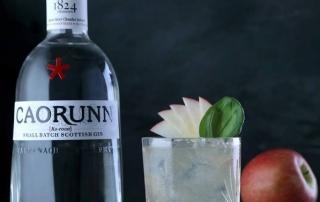 der schottische Caorunn Gin im Test & Tasting