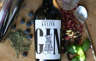 Schrödingers Katzen Gin im Test & Tasting