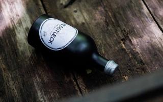 Wildstueck Danube Dry Gin im Test & Tasting