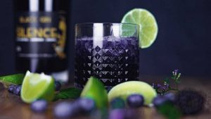 Bramble Cocktail mit Glory of Silence Black Gin