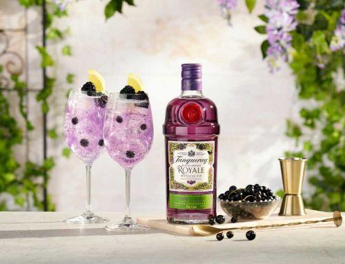 Tanqueray Blackcurrant Gin mit Beeren & Vanille im Test & Tasting