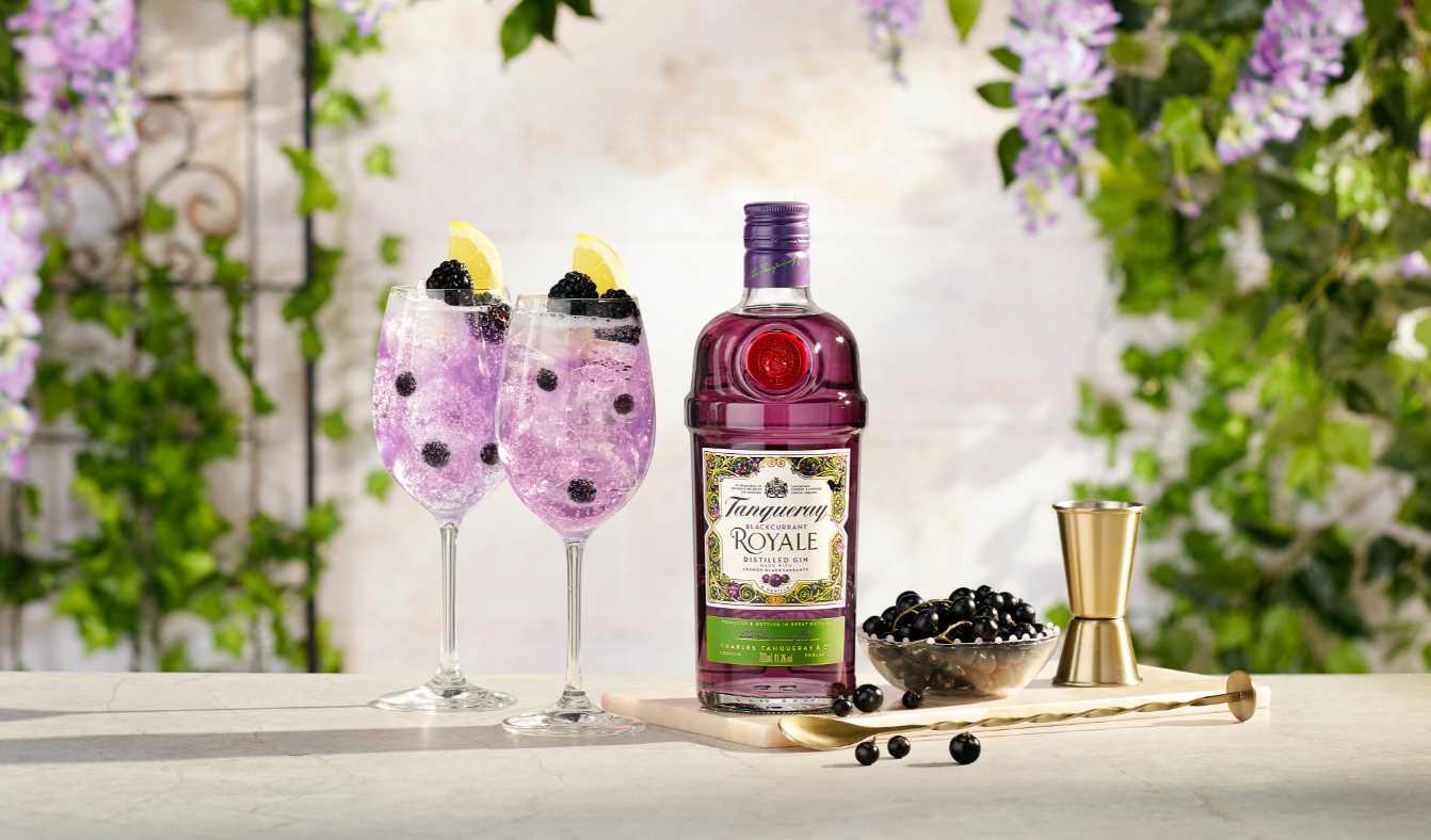 Tanqueray Blackcurrant Gin mit Johannisbeeren im Test & Tasting